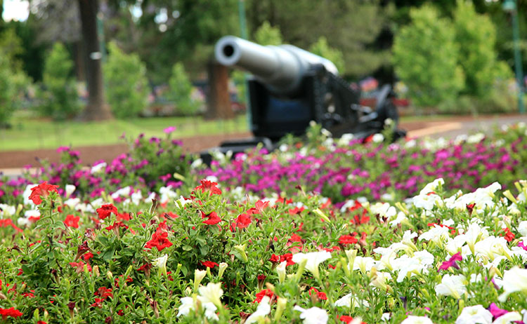 Queens Park Cannon Toowoomba